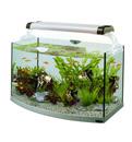Для аквариумов и растений